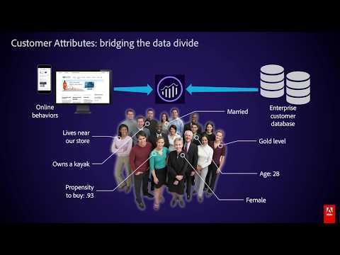Customer Segmentation Strategies & Best Practices In Adobe Analytics